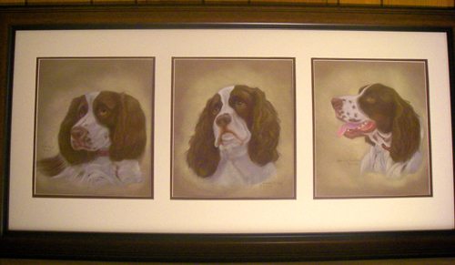 The Three Springer Spaniels